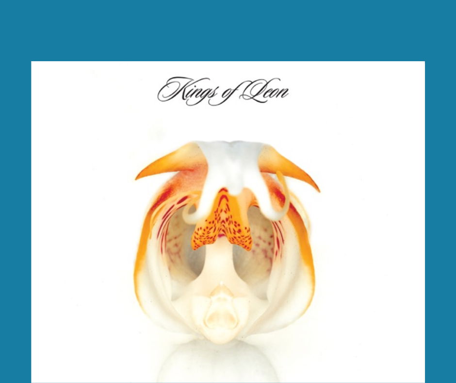 "Album cover from Kings of Leon's album titled ""Aha Shake Heartbreak"""